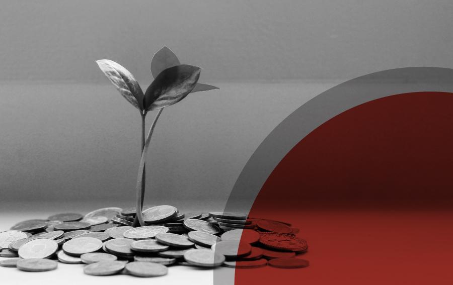 Fonduri nerambursabile pentru IMM-uri și PFA în cadrul